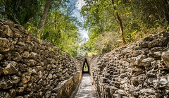 Sometimes you need to get lost to find your way. (catrall) Tags: mexico yucatan campeche becan way forest stones lost nikon d750 fx sigma sigmalens 24105 march 2018 trail