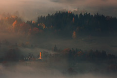 As the Years Pass Along.... (Bonnie And Clyde Creative Images) Tags: landscapes poland autumn europe mist canon