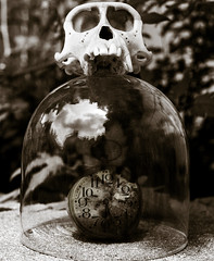 58 (Mitch2742) Tags: 5pm flickrfriday its5oclock time passage passing age skull monochrome clock alarm outdoors outside bokeh 5d markiv 35mm surreal fantasy macaque teeth dome glass reflection skulls noise grain grainy