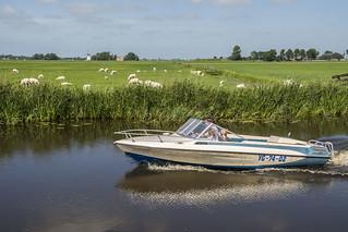 Reesboat / Speedboat