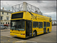 SON OF VLAD (Jason 87030) Tags: impaler vlad sonofvlad plaxton president yellow ryde mesh safety branch tree lopper feller cutter trees highway maintenance wheels weather island isleofwight vehicle 1947 southernvetis y747tgh