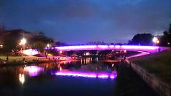 週末的釣客 Weekend anglers (葉 正道 Ben(busy)) Tags: 魚 fish sky water bridge river creek taichung taiwan 天空 水 橋 河 溪 台中 台灣 夜 night 羅非魚 tilapia 吳郭魚 anglers 釣客