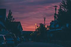 Moody Sunset (freyavev) Tags: sunset moody purple malmsheim germany deutschland badenwürttemberg street pink canon canon700d telelens vsco outdoor urban mikasniftyfifty town