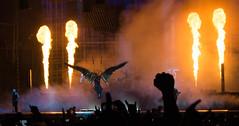 Download 2016 (robertpick72) Tags: download artist element download2016 festival rammstein fire stage castledonington england unitedkingdom gb