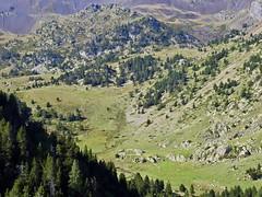 Valle de Claror (Mono Andes) Tags: andorra patrimoniodelahumanidad worldheritage pyrénées pirineos valledemadriuperafitaclaror claror