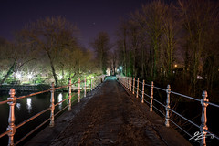 Tell Me What's Good (TVZ Photography) Tags: trees bruges brugge westflanders belgium lakeoflove minnewater night evening longexposure lowlight sonya7riii zeiss loxia 21mm