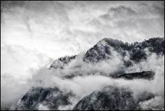 The Fog (TheOtherPerspective78) Tags: nebel landscape fog landschaft mountains mountainrange alps alpine zwölferkogel elferkogel löckerkogel ramsau hallstatt badgoisern berge gebirge wolken clouds cloudscape wilderness nature natur rockface austria outdoors countryside theotherperspective78 canon eosm6