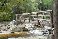 Bridge Works 1808254190w (gparet) Tags: hike hiking trail trails woods forest nature outdoor outdoors scenic vista naturephotography lake pond brook creek stream water watercourse waterfall waterfalls