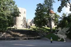 Tallinn_Riga 2018_trasferimento_39