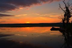Magic of dawn (melliottohaire) Tags: dawn hudsonriver esopusmeadows hightide tidalriver