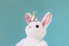 A Kiss on the Head (Arielle.Nadel) Tags: mia rabbit miarabbit bunny cute sweet kiss hershey hersheys chocolate adorable plush toyphotography whitebunny