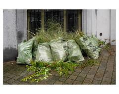 BRUXELLES POUBELLES # 1 (bruXella & bruXellus) Tags: trash poubelles müll sacvert bussels brüssel bruxelles brussel belgique belgien belgië belgium leicax1
