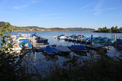 Willerzell - Bootshafen (uwelino) Tags: switzerland schweiz swiss suisse swisstravel swisstravelspectacular kanton schwyz 2018 europa europe sihlsee willerzell lago see