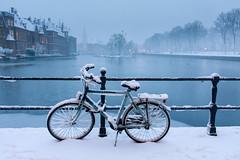 20171211-Canon EOS 750D-3050 (Bartek Rozanski) Tags: denhaag zuidholland netherlands thehague hague winter snow hofvijver binnenhof parliament pond city dutch holland