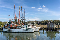 Another Day Along Shem Creek