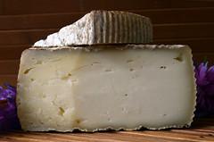 Camerano (Ricard2009 (Martí Vicente)) Tags: ilobsterit queso fromage cheese formatge kaas formaggio queijo ost sir τυρί сыр sūris peynir brânză gazta sajt caws сирене גבינה جبنة チーズ 奶酪 camerano goatcheese