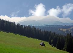 Mountain horizon in Zakopane (Adam Nowak) Tags: hale chmury krajobraz
