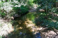 Vaughn Creek (MarksPhotoTravels) Tags: bluewallpreserve greenvillecounty southcarolina
