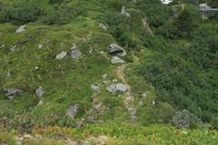 le sentier en contre-bas (bulbocode909) Tags: valais suisse valdentremont vallondevalsorey montagnes nature sentiers rochers fleurs vert arbres