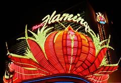 Flamingo, Las Vegas (cestlameremichel) Tags: canon ae1 kodak portra night nevada lights circus strip las vegas boulevard 800 film 35mm analog analogue analogica filmisnotdead argentique
