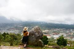 _DSC6605 (Quyr) Tags: dalat vietnam green smoke frog cloud tree forest langbiang lamdong portrait thunglungvang duonghamdatset