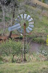 10-foot Intercolonial Boring Company (IBC) Geared Simplex windmill; Balmoral Heights, Queensland, Australia (sarracenia.flava) Tags: ibc intercolonial boring company greaed simplex windmill australia blackall range maleny balmoral heights queensland qld