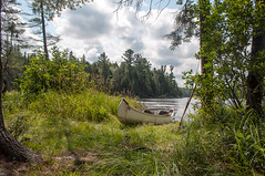 Outdoor Life (Jackx001) Tags: algonquin august2018 bushcraft camping canada civicholiday gaia jacknobre loon naturalworld nature ontario thirtylake wildcamping bird canoe crownland freedom lifestyle outdoorlife