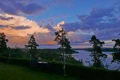 skys (Leifskandsen) Tags: skys red bay nature water sea oslofjorden camera leica living leifskandsen skandsenimages skandsen scandinavia
