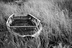 Stiltje (Anders Bromell) Tags: fs180826 fotosondag stiltje calm eka blackandwhite