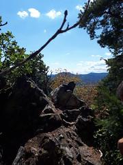 Rocher du Falkenstein (Maison de l'Alchimiste) Tags: rocherdufalkenstein alsace basrhin