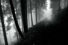 _In the fog... (milance1965) Tags: mist nebel fog regen schwarzweiss blackwhite österreich kärnten goldeck spittaldrau canon 6d sigma landschaft