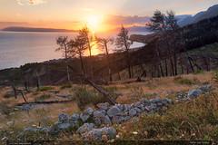 Večer nad Tučepi (jirka.zapalka) Tags: croatia chorvatsko sunset sun evening tucepi landscape nature sea trees pines