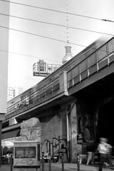 Stadtbahn (ucn) Tags: agfacopexrapid berlin mitte stadtbahn zeissikondonata2277u rollexpatent6x9cm filmdev:recipe=12019 adoxadoluxatm49 developer:brand=adox developer:name=adoxadoluxatm49
