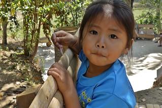 INDONESIEN, SULAWESI, Tanah Toraja, little girl in Lemo, 17615/10624