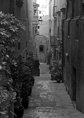 Valletta Street (alicejack2002) Tags: valletta malta street bw steps