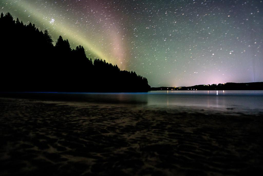 Aurora and Algae