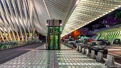 Liège, Belgium: Liège-Guillemins railway station (nabobswims) Tags: belgianrailways belgium hdr highdynamicrange lightroom liège liègeguillemins nabob nabobswims photomatix sel18105g sncb santiagocalatrava sonya6000 station be