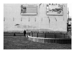 161105_00010_OM2n_city fragment 6/19 (A Is To B As B Is To C) Tags: aistobasbistoc b belgië belgium antwerpen antwerp vanimmerseelstraat langekievitstraat kievitwijk olympus om2n analog film kodak tmax bw blackwhite blackandwhite monochrome city urban fragment people street streetphotography citylife dog urbanrenewal urbanism development before demolished