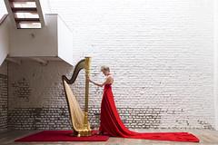 Agnès (takeitysie) Tags: harp harpiste red dress nikon nikond610 d610 woman gold carpet rood room inside stairs trappen takeitysie tysje tysjeseverens bricks wall white wood light natural severens portrait portret portraits portretten belgium belgië brussel brussels music musician musici