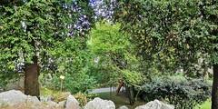 Lucca (Pierre MM) Tags: lucca jardin botanique toscane italie