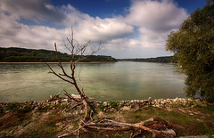 IMG_5804 (radomirmor) Tags: water river sky cloud dunaj tree wood rock grass lanscape