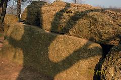 070315 gdpW 180918 © Théthi (thethi (pls, read my 1st comment, tks a lot)) Tags: ombre peur pierre poudingue construction mégalithe néolithique dolmen arbre autrefois weris durbuy luxembourg wallonie belgique belgium
