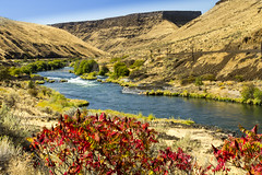 Deschutes River, Oregon (icetsarina) Tags: oregon fall autumn foliage leaves deschutes