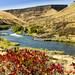 Deschutes River, Oregon