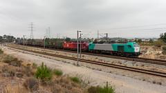 Takargo Internacional em Penalva (João Pagaimo) Tags: ferrovia railway mercadorias freight penalva portugal takargo takargo6000 ibercargo ibercargo335 palmetal transfesa