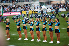 Sharks v Knights Rd 24 2018_240.jpg (alzak) Tags: sports sport newcastle dance cheerleaders dancers dancing action rugby sydney australia dancer knights national mermaids sharks cheer shire cheerleader cheerleading mermaid sutherland performers league cronulla routine 2018 nrl skirt