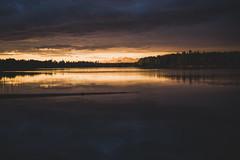 Midsummer18-44 (junestarrr) Tags: summer finland lapland lappi visitlapland visitfinland finnishsummer midsummer yötönyö nightlessnight kemijoki river