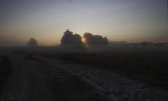 Path to the sun (Theo Bauhuis) Tags: haaksbergeseveen herfst mist ochtend zonsopgang zonsopkomst sunrise early fog dirtroad zandpad twente netherlands