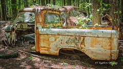 Old Car City 151 (augphoto) Tags: augphotoimagery abandoned decay old ruins rust rusty texture truck vehicle weathered white georgia unitedstates