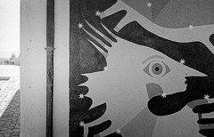 50 img236a_DxO (Domenico Cichetti) Tags: bw bn selfdevelope argentique kentmere100 blackwhite blackandwhite monocrome analogicait analogico